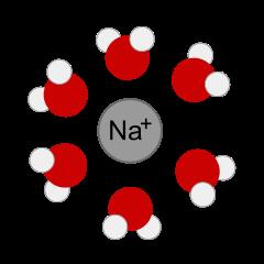 Solvatace Na+ iontu molekulami vody