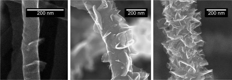 SEM snímek uhlíkových nanotrubic.